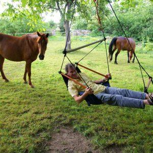 Pferde, Entspannung, Wiese, Hotel Dresden
