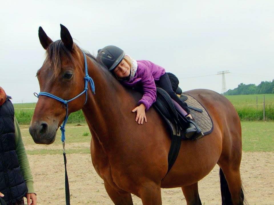 pferd-mit-kind300k